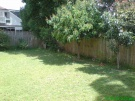 Campsie 2 small room for single $105/120,